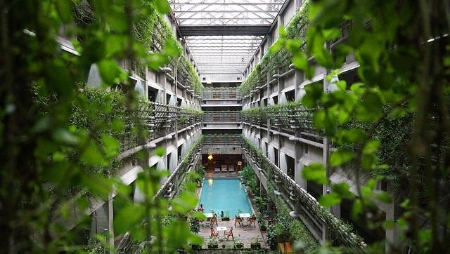 Les plantes s'introduisent dans la vie citadine