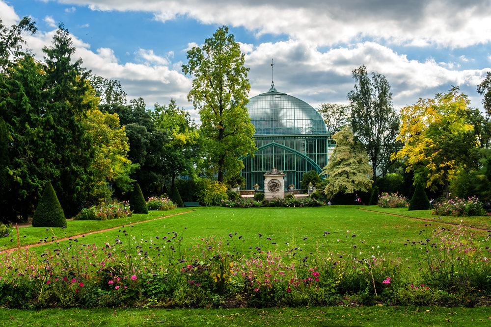 Activité - Le nature à Paris va animer cet été !