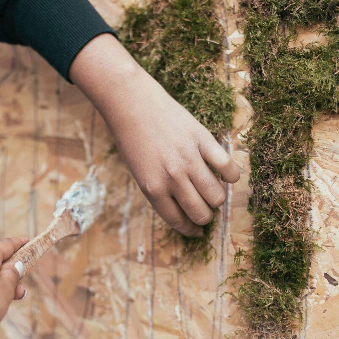 Activité végétale Team Building  : fresque végétale collaborative