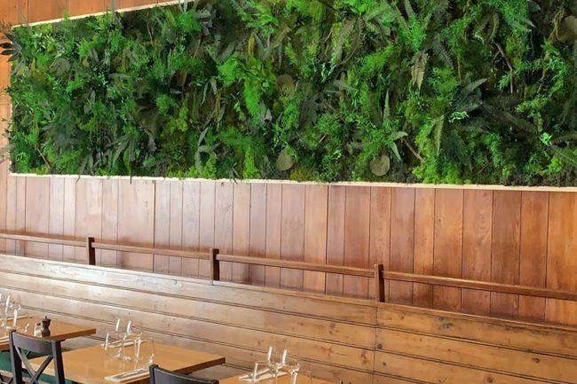 Mur végétal sur-mesure Les Petits Pois