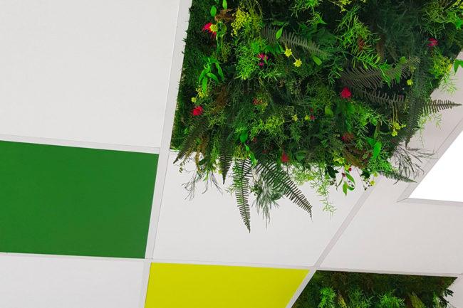 Architecture végétale dalle de fond plafond végétale