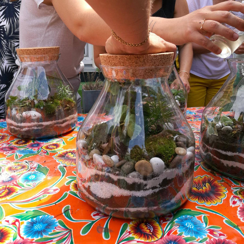 Activité végétale : Terrarium personnalisé