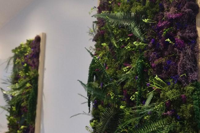 Architecture végétale tropicale Cadre végétal