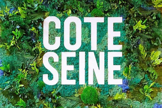 Design végétal Mur végétal sur mesure Côté Seine
