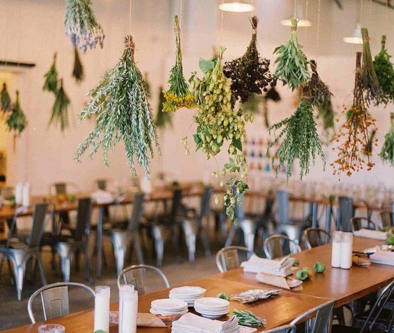 Végétaliser son restaurant pour une décoration naturelle et unique avec le minimum d'entretien