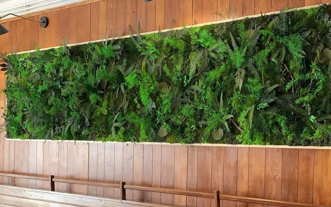 Mur végétal sans entretien : quelles sont les solutions ?