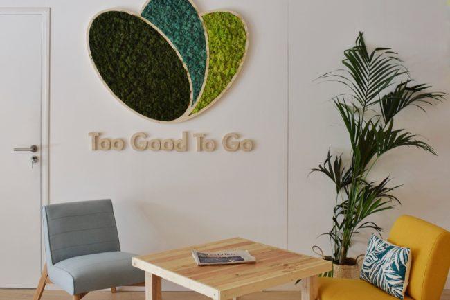 Design végétal Logo végétal sur mesure stabilisé
