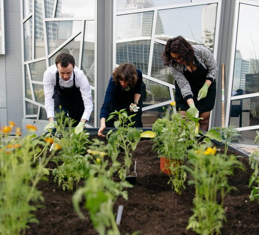 Green Team Building