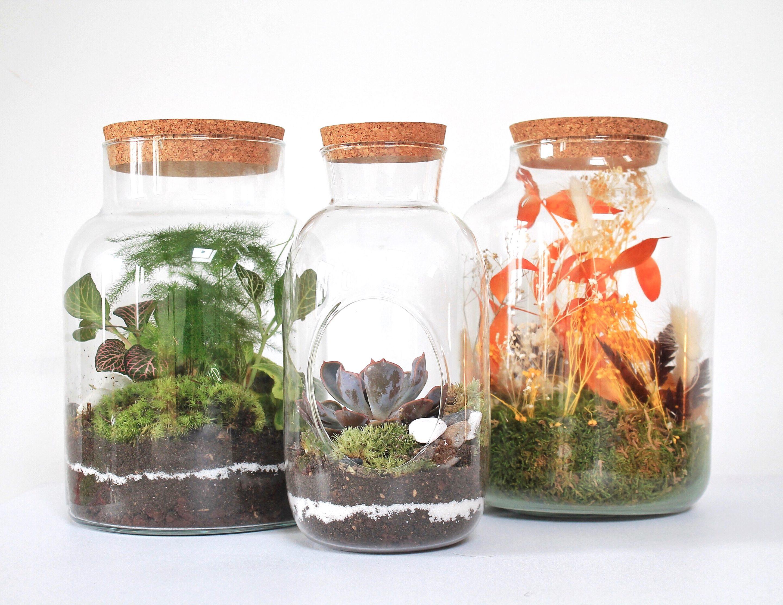 Terrarium personnalisé végétal et floral