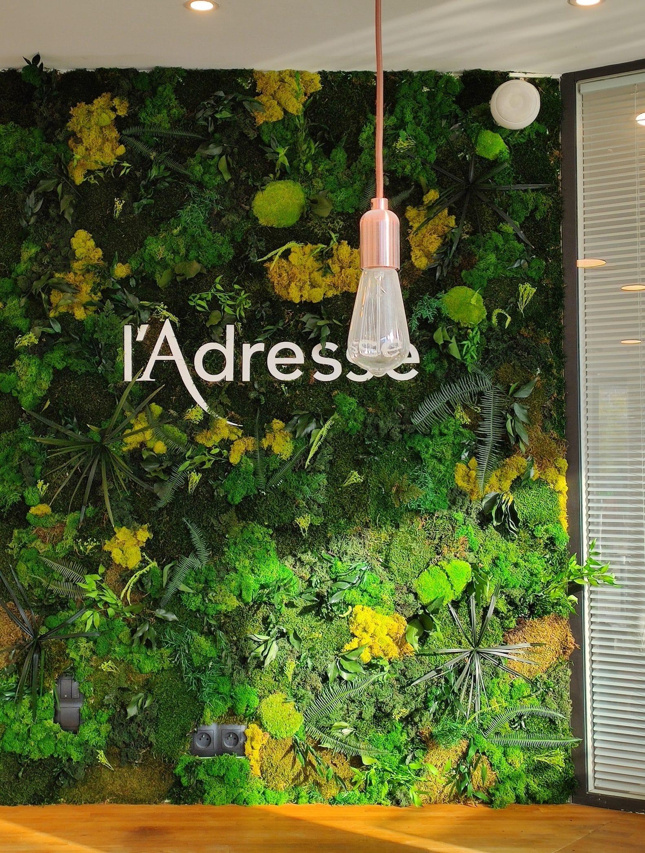 L'Adresse mur végétal sur-mesure design vegetal stabilisé
