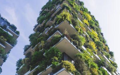 Pourquoi et comment végétaliser sa ville ?