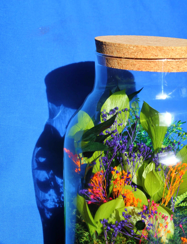 Kit Terrarium Floral Dalida DIY