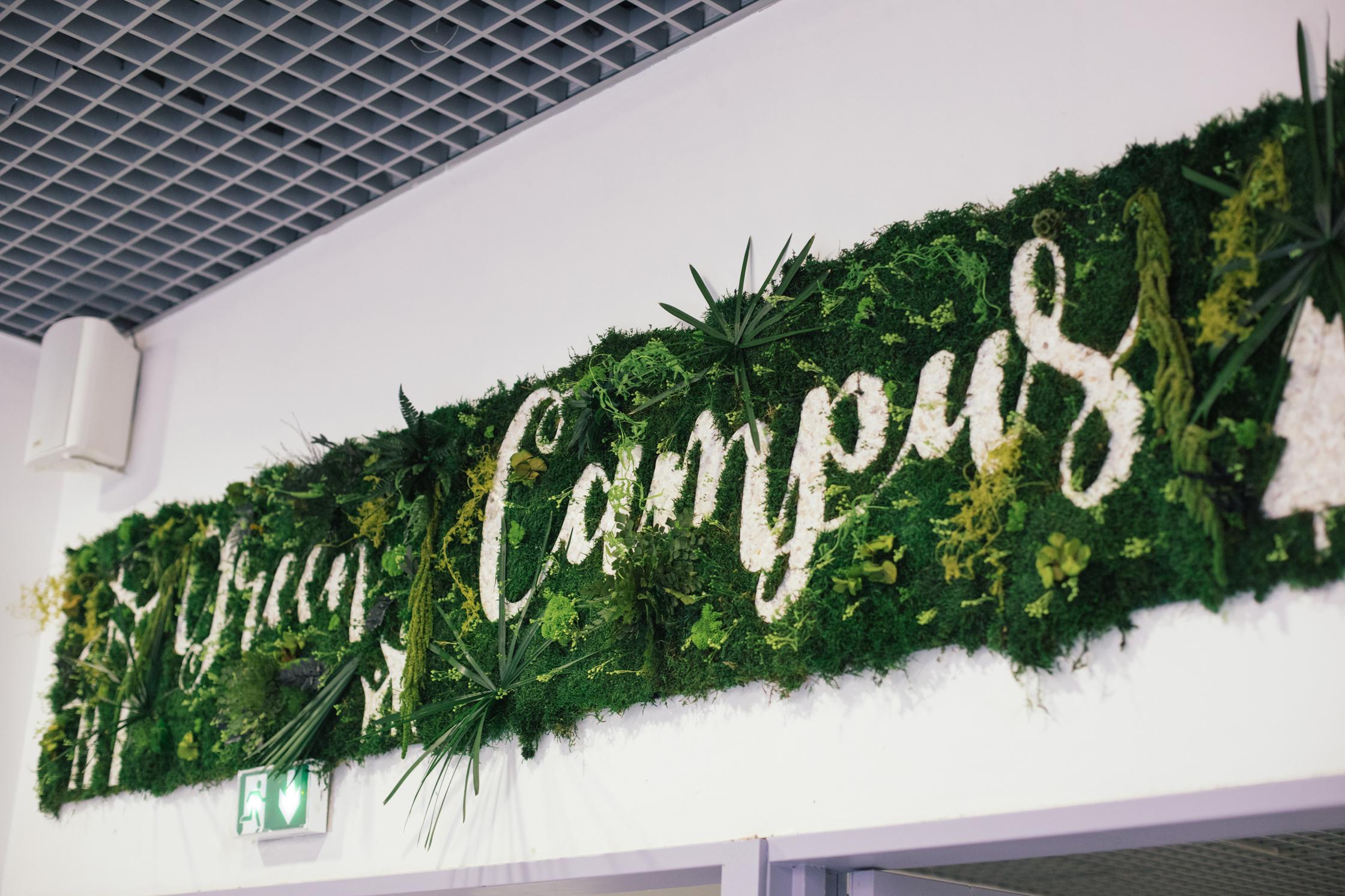 Fresque végétale réalisée au cours d'un atelier Fresque Végétale avec le campus CFA