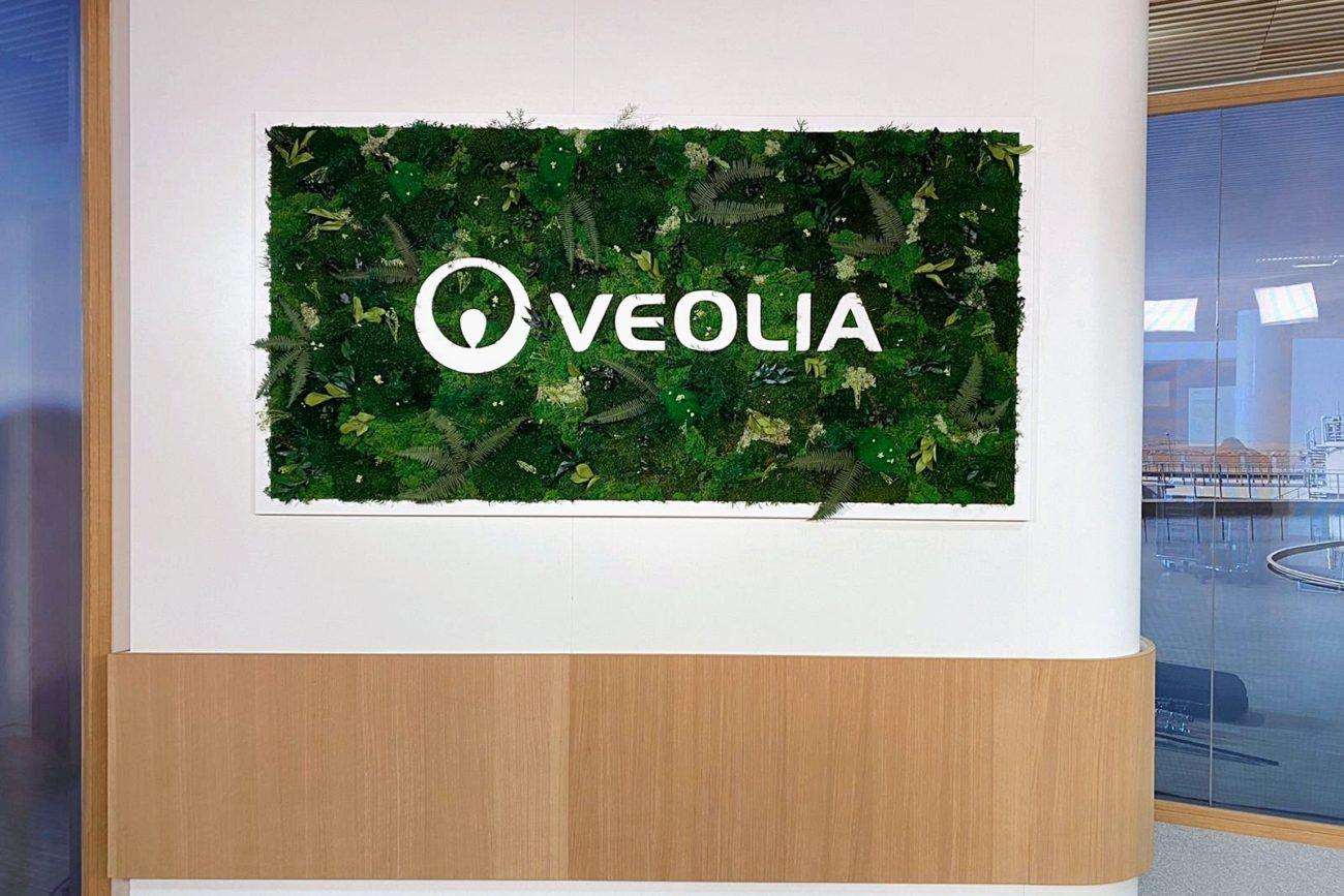 Mur sur-mesure en végétaux stabilisés