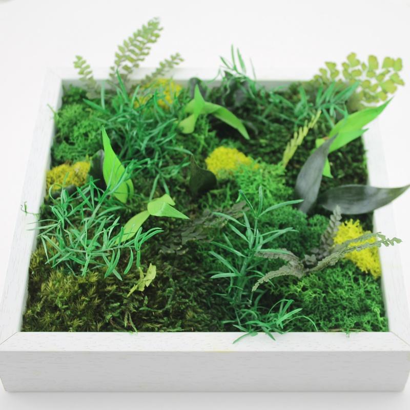 Atelier cadre végétal stabilisé
