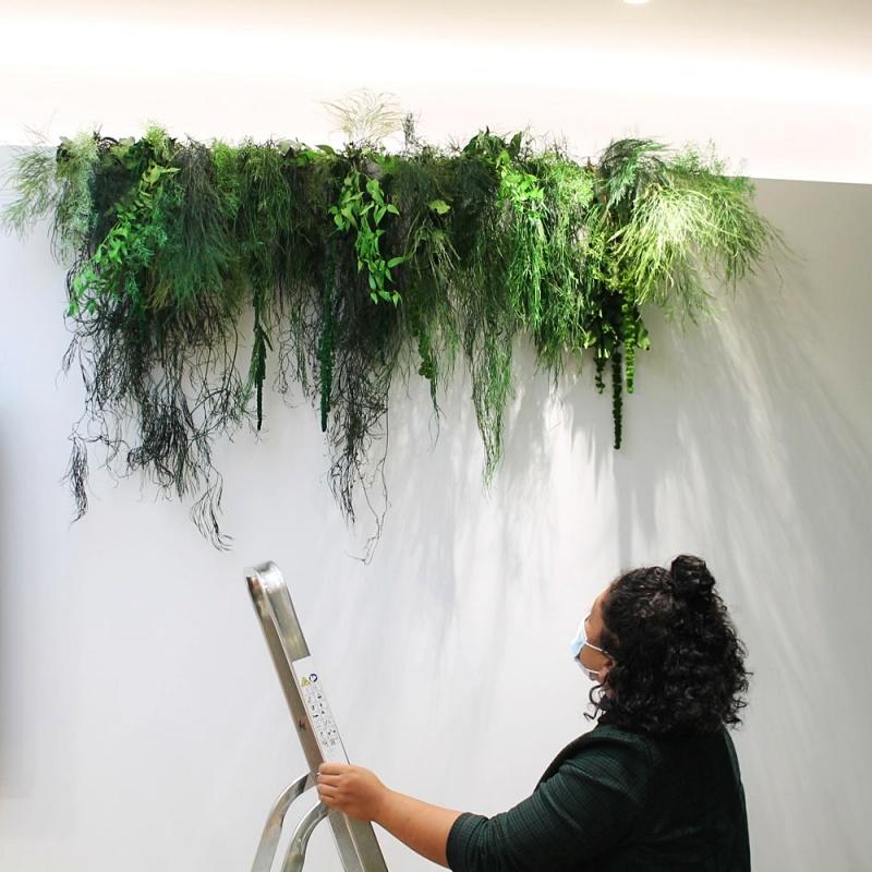 Plafond végétal stabilisé