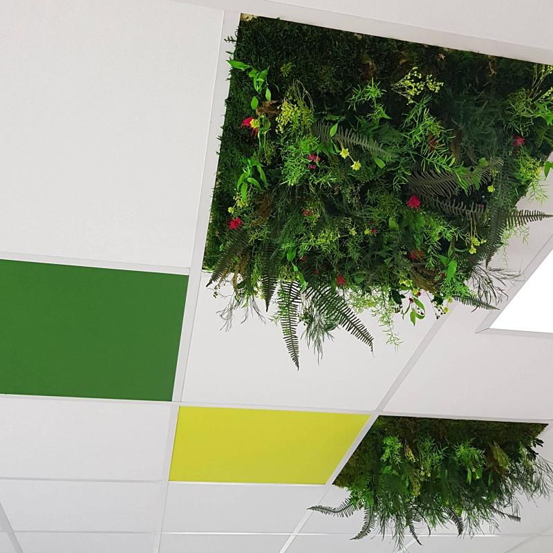 Dalles de fond plafond en végétaux stabilisés
