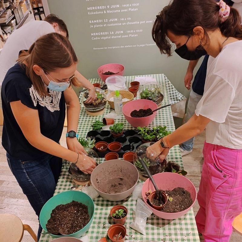 Atelier Terrarium BHV Marais