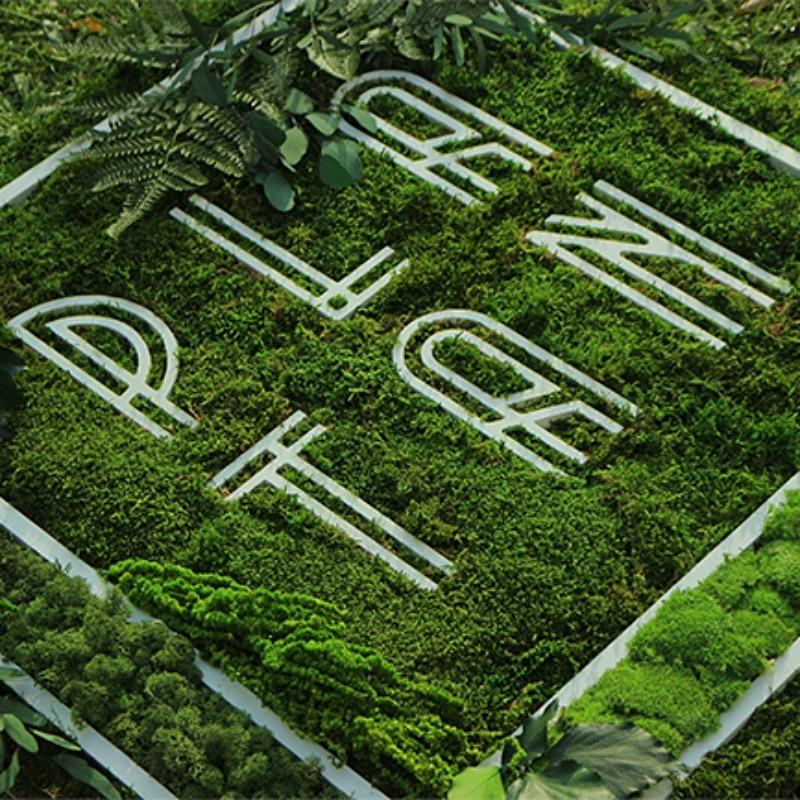 Logo végétal sur mesure