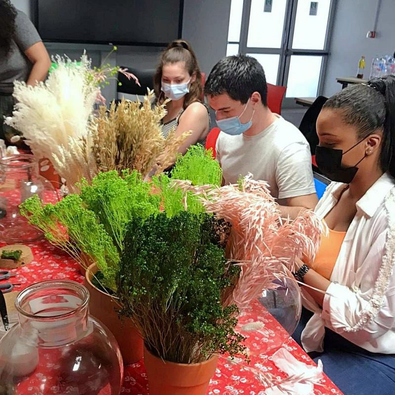 Atelier terrarium fleurs séchées Monoprix