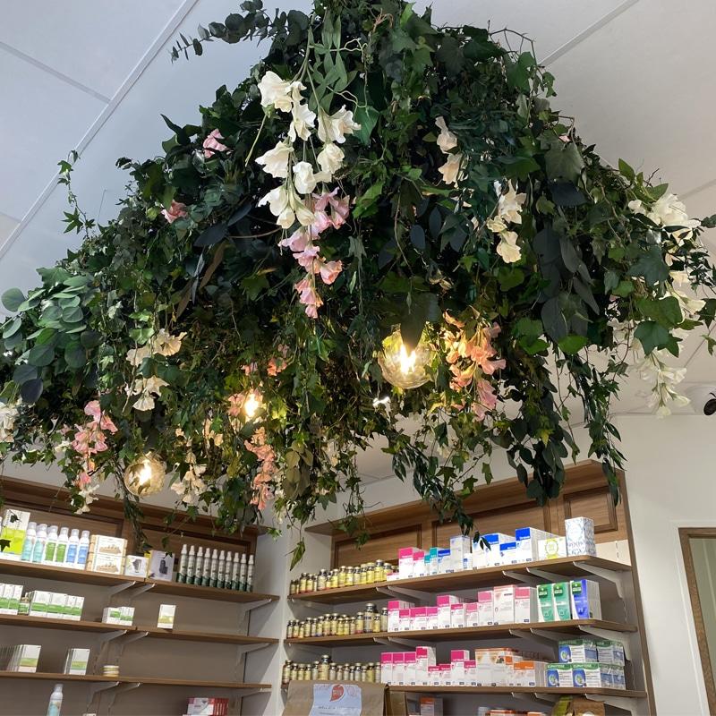 Suspension florale pour une pharmacie
