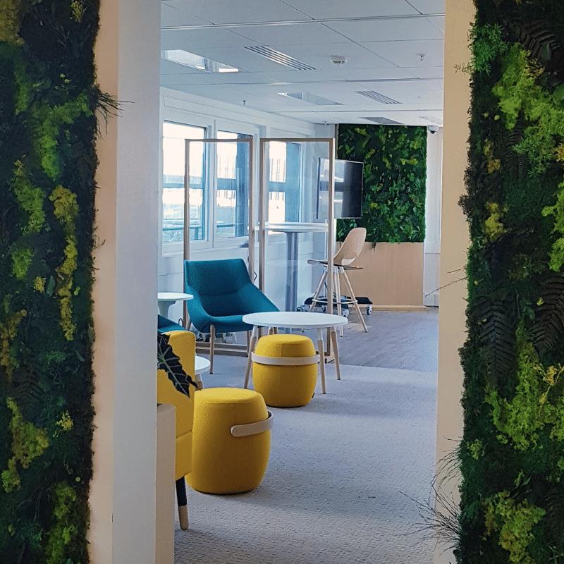 Mur végétal pour des bureaux